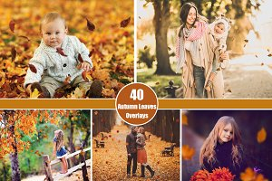 40 Autumn Leaves Overlays