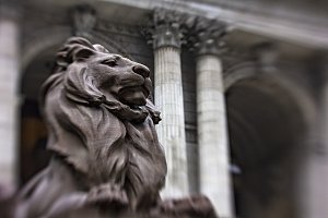 Lion at New York Public Library