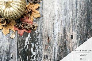 Autumn Backdrops ~ Pumpkin