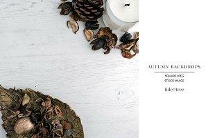 Autumn Backdrops ~ Gold Leaf