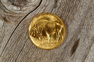 American Gold Buffalo on rustic wood