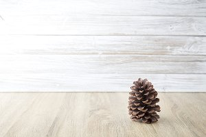 pine cones with wall white wooden