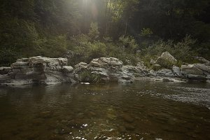 Watercourse immersed in nature