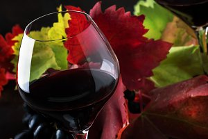Dry red wine from pinot noir grapes