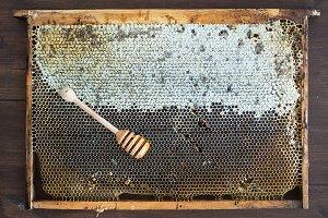 Village honey in honeycombs