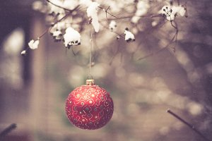 Christmas ball on a tree branch