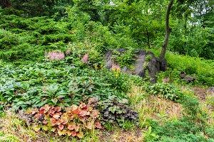 Strawberry Fields garden in Central