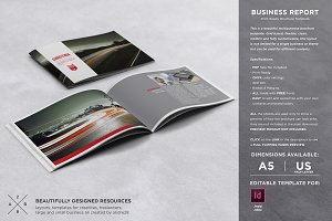 Business Brochure / Report Template