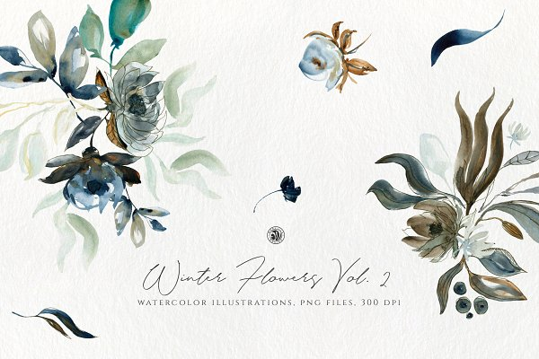 Illustrations and Illustration Products: Webvilla Design - Winter Flowers Vol.2