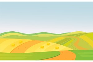 Summer rural fields landscape