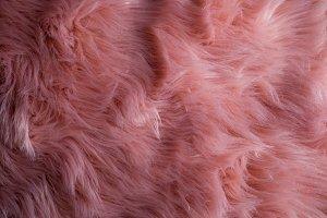 Pink sheepskin. Pink fur texture