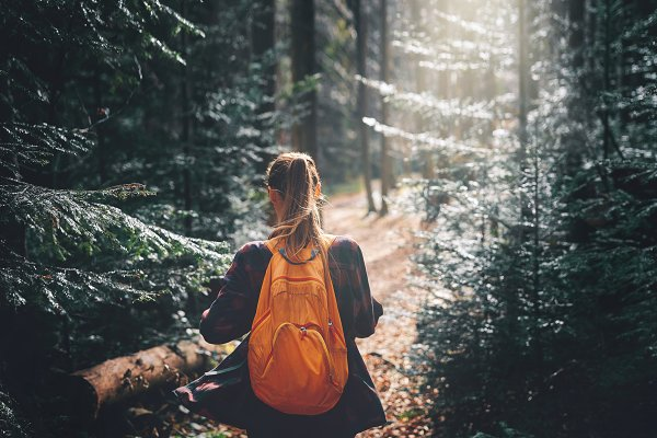 People Stock Photos: vitaliymateha photography - woman hiker walking on the trail in