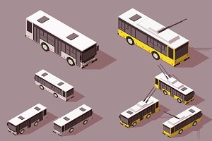 Trolleybus and  bus