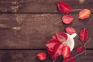 Red leaves and brown surface