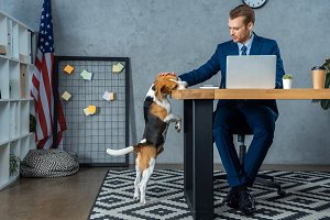 cheerful businessman working at tabl