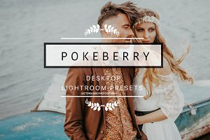 Desktop Lightroom Presets POKEBERRY