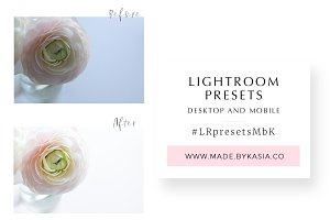Presets for styled stock photos
