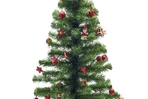 Christmas fir tree with colorful lig