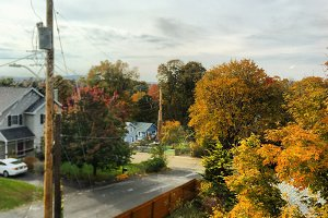 Neighborhood in Fall
