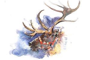 Christmas Santa Claus deer fairy
