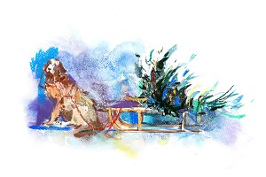 Dog on the sleigh carries a