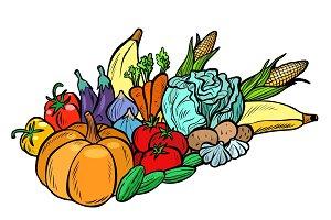autumn harvest pumpkin corn cabbage