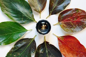 Camera lens surrounded by colorful a