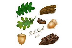 Oak bark collection elements