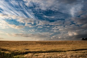 Sky over field