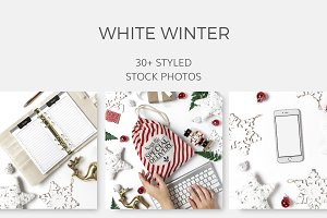 Winter White Christmas (30+ Images)