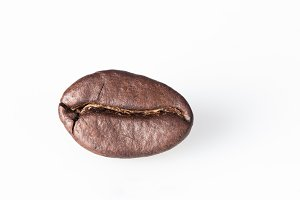 coffee bean on white background
