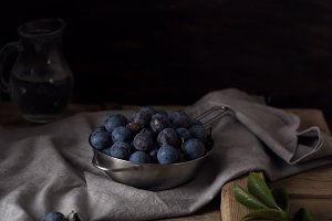 Blue blackthorn or sloe berries on