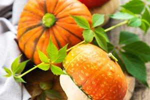 Autumn arrangement of pumpkins