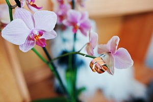 Luxurious golden wedding rings hangi