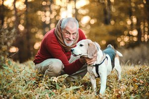 A senior man with a dog in an autumn