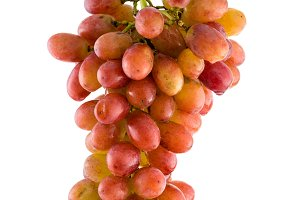 Cluster of grape on white isolated b