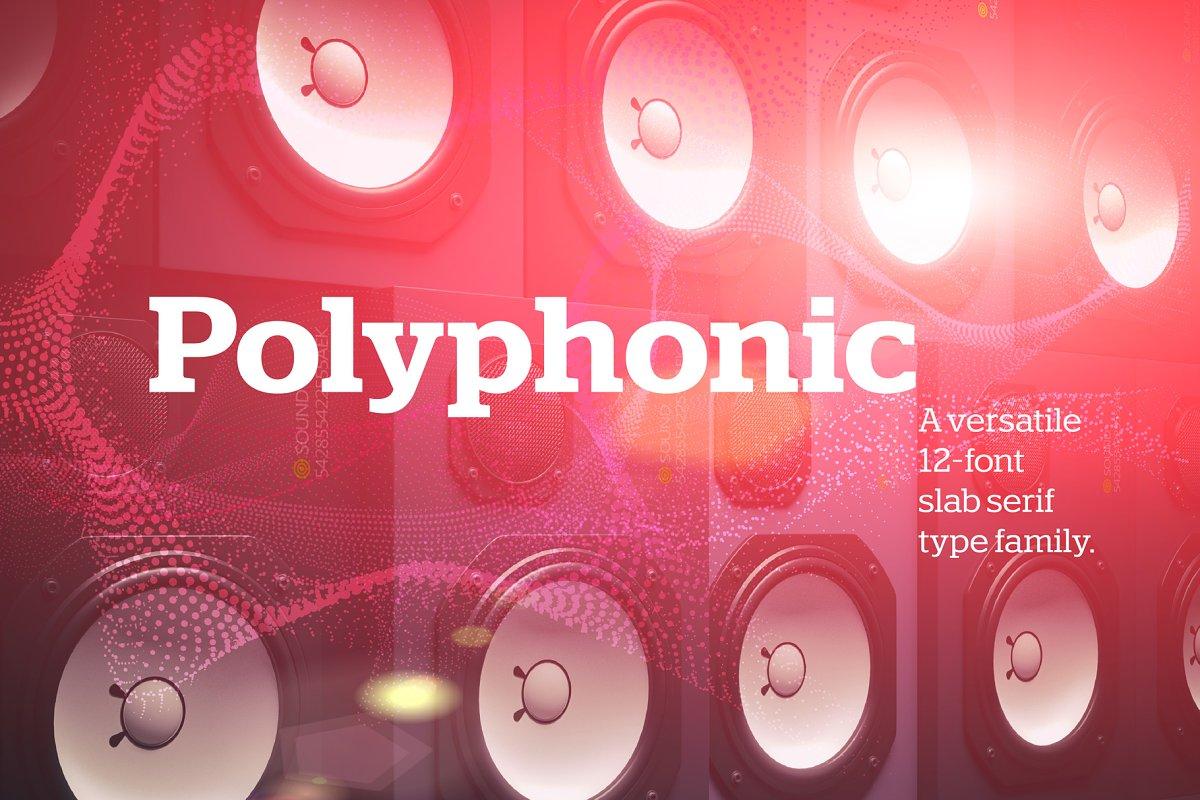 Polyphonic 12-Font Slab Serif Family