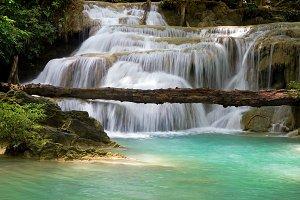 Fallen Tree Waterfall