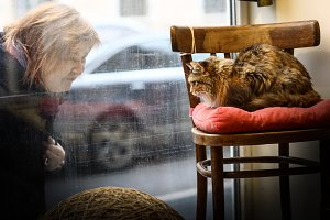 cat cafe storefront with woman look