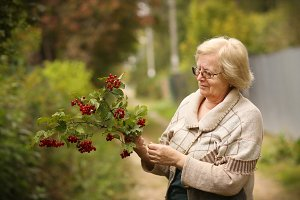 healthy pensioner woman in garden wi
