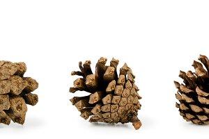 Set of cones close-up