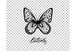 Butterfly. Vector illustration