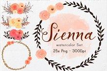 Watercolor Flowers & Elements