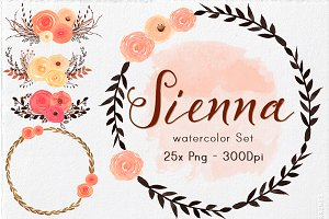 Watercolor Flowers & Elements