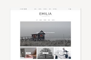 WordPress Theme, Responsive, Emilia