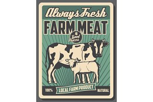 Cattle farm, meat market products