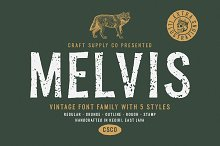 Melvis - Vintage Font Family+Extras by  in Sans Serif Fonts