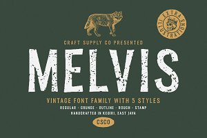 Melvis - Vintage Font Family+Extras