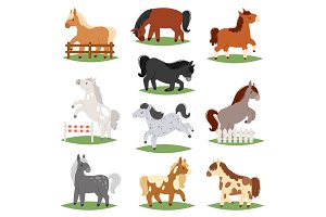 Cartoon horse vector cute animal of