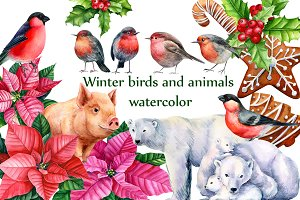 Winter birds and animals, watercolor